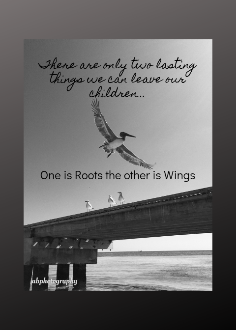 One is Roots the Other is Wings